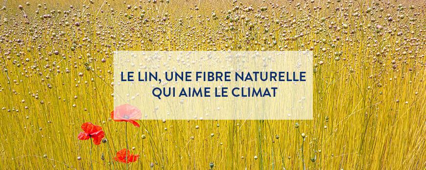 Le lin, une fibre naturelle qui aime le climat